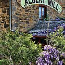 The Albert Mill by Barb Leopold