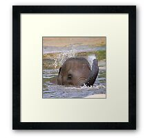 Playful Water Baby Framed Print