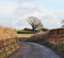 Autumn Road by Carl Bassett