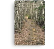 Mystery Wood Canvas Print