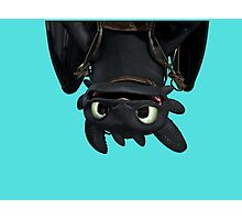 Upside Down Toothless Photographic Print