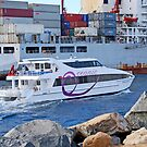 The Rottnest Ferry by robert murray