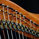 Harp by Leroy Laverman
