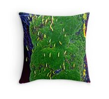 WITH SOME LICHENS ON IT Throw Pillow