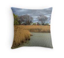 Canard River April Throw Pillow