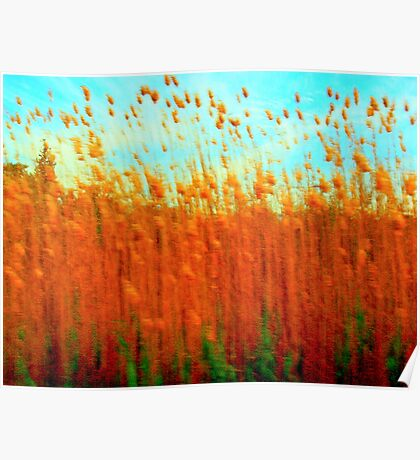 Impressionistic Gallery - Red Gold Wheatfield Poster