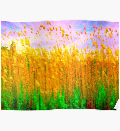 Impressionistic Gallery - Gold Wheatfield Poster