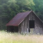 Little Barn by Rita Ballantyne