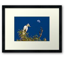 What? It's Morning Already? Framed Print