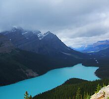 View from Bow Summit 2 by ArianaMurphy