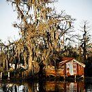 Swamp Shack by RayDevlin