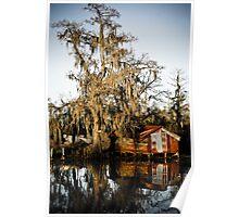Swamp Shack Poster