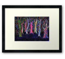 Shining forest Framed Print