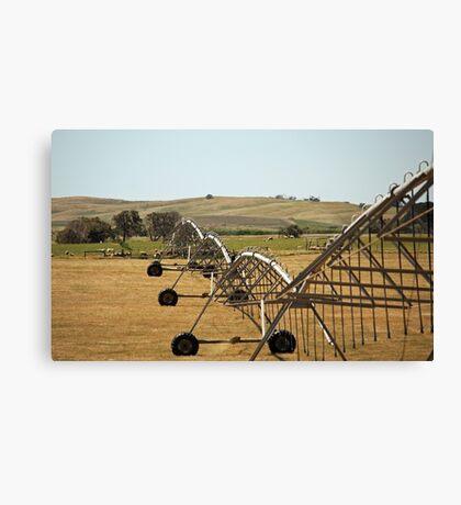 Centre Pivot Irrigation, Mt Benson Canvas Print