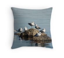 Birds of a feather, flock together! Throw Pillow