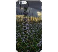 Wild Field Mint iPhone Case/Skin