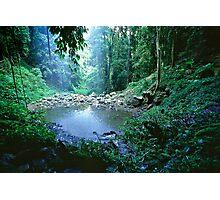 Crystal Shower Falls - Dorrigo National Park NSW, Photographic Print