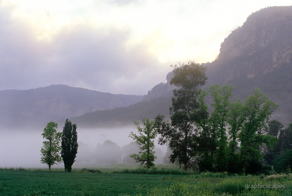 Morning Mist - Glen Davis, Blue Mountains NSW  by graphicscapes