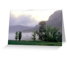 Morning Mist - Glen Davis, Blue Mountains NSW  Greeting Card