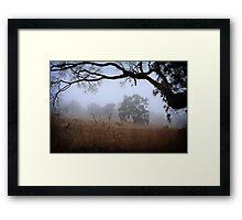 Foggy Summer Evening, Mount Barker Framed Print