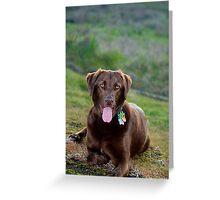 Pet portrait Greeting Card