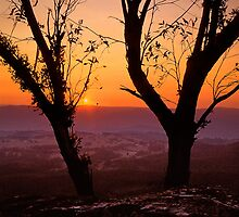 Blue Mountains Sunset - Blackheath NSW by graphicscapes