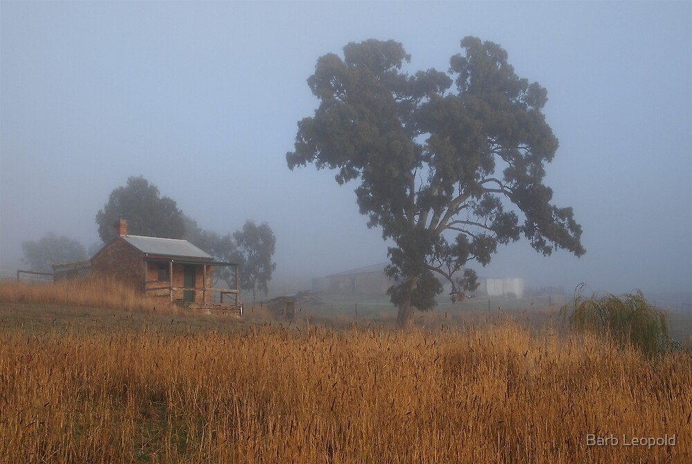 Foggy Morning at the Summit by Barb Leopold