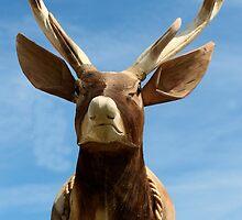 Wooden Deer by Stephen Willmer