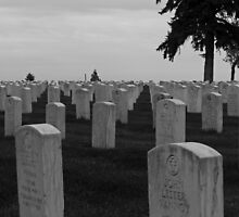 Little Bighorn Cemetery by ZombieEnnui
