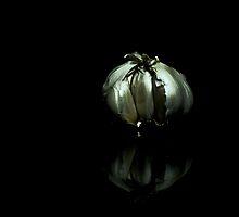 Bulb by Paul Cons