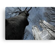The Two Towers (Mordor and Isengard ;P) Canvas Print