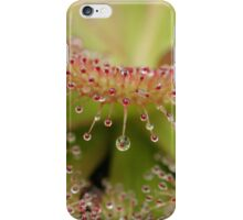 Sundew - Abstract iPhone Case/Skin