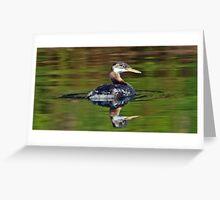 grebe reflections Greeting Card