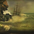 Shipwrecked !! by Irene  Burdell