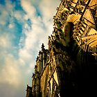 York Minster - warm sky by ROGUEstudio