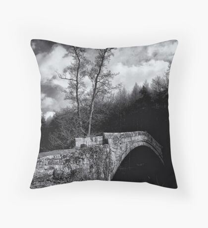 Parted by history and water Throw Pillow