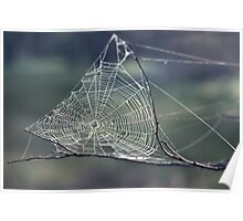 Spiders web Toodyay 19820814 0003  Poster