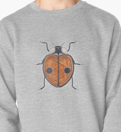 Ladybug - Orange Pullover