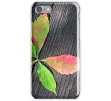Four Leaves iPhone Case/Skin