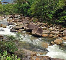 Mossman Gorge by Terry Everson