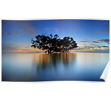 High tide at Nudgee Beach Poster