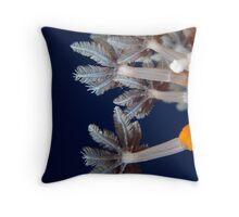 Soft Coral Polyp - Macro Throw Pillow