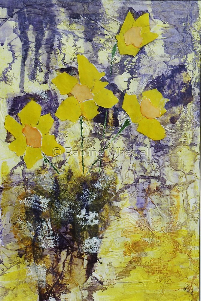 Daffodil time by © Pauline Wherrell