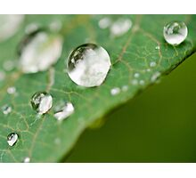 Perfect Droplet Globes Photographic Print
