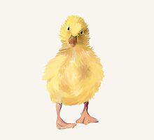 Duckling by Bamalam Art and Photography