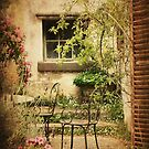 Courtyard Garden at Montsalvat by Angie Muccillo