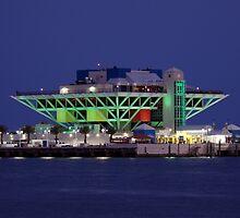 St. Petersburg Pier Green by Laura Sweeney