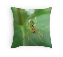Oh What A Tangled Web We Weave! Throw Pillow