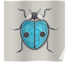 LadyBug - Blue Poster