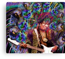 Are you experienced Canvas Print